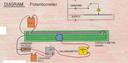 Potentiometer (Slide Wire)