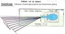 White Light Diffraction (Transmission Grating)
